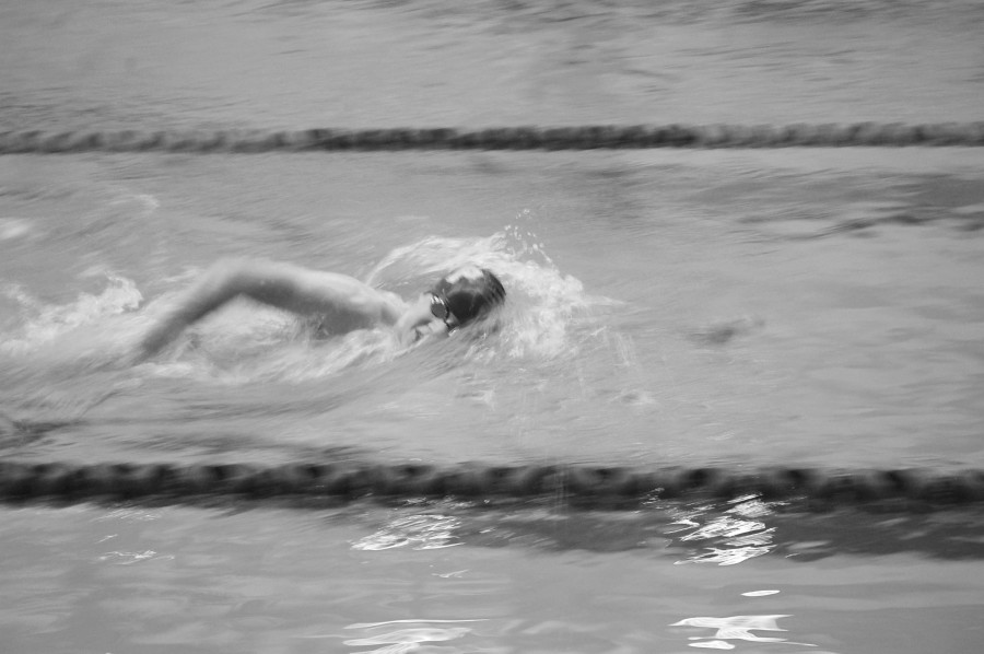 Nate Miller '15 churns through the water, swimming freestyle at Meadowbrook Pool on December 6.