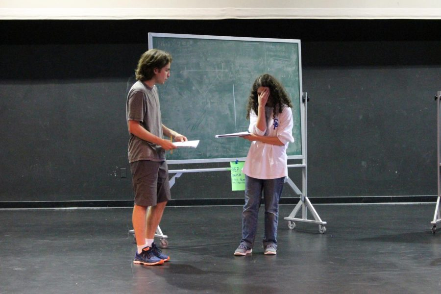 Cast+members+rehearse+for+The+Curious+Incident+of+the+Dog+in+the+Night.+The+show+opens+on+October+25%2C